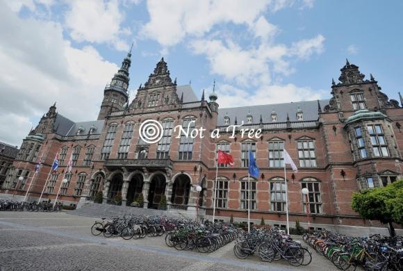 Thesis internship netherlands