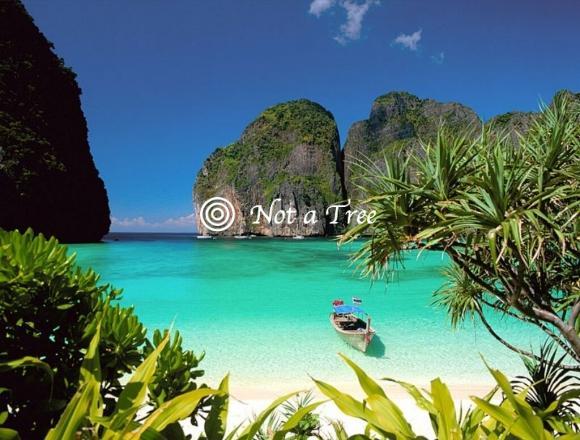 Нетуристические (длительные) визы в Таиланд