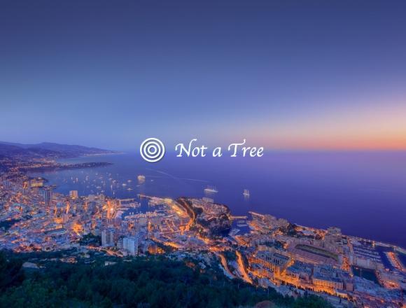 Достоинства Монако