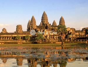 Эмиграция в Камбоджу