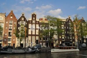Переехать в Голландию на пмж