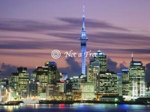 Пмж в новую Зеландию