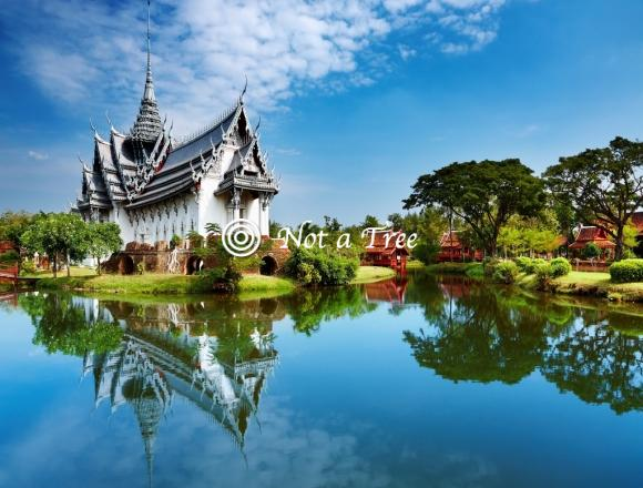 Медицина в Таиланде