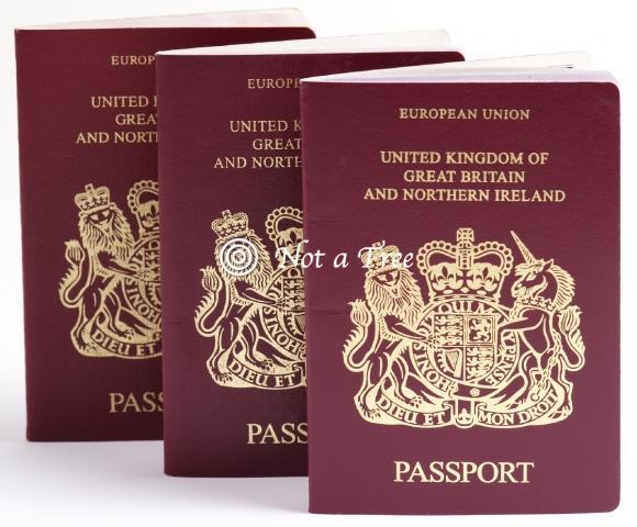 Как я вылетала из России в  Великобританию с двумя паспортами