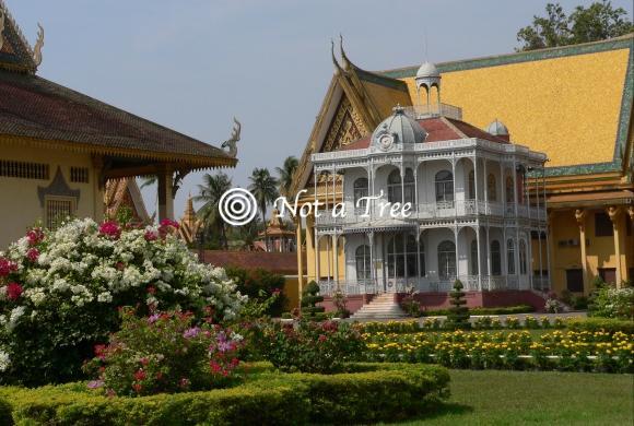 ВНЖ в Камбодже