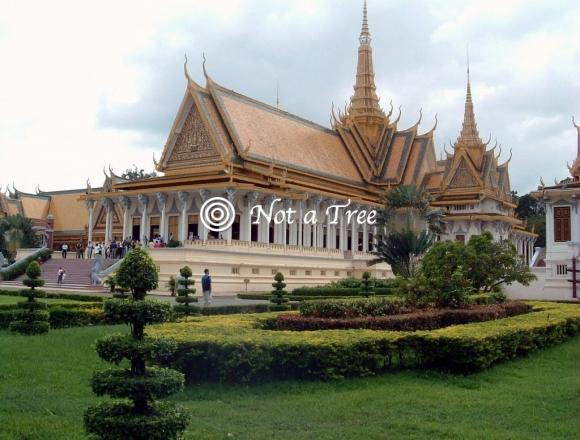 Протекционизм в Камбодже