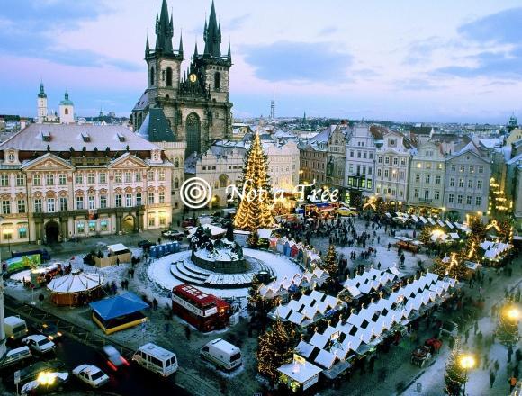 Проблемы ВНЖ для предпринимателей в Чехии