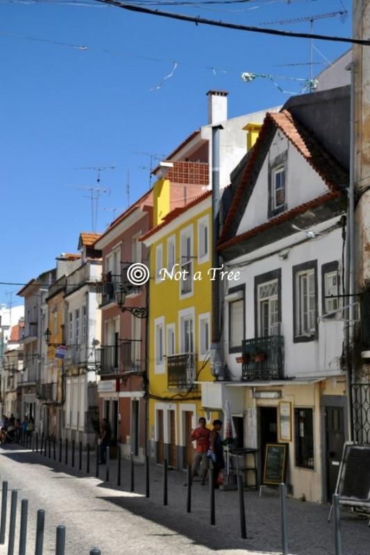 Легализация в Португалии