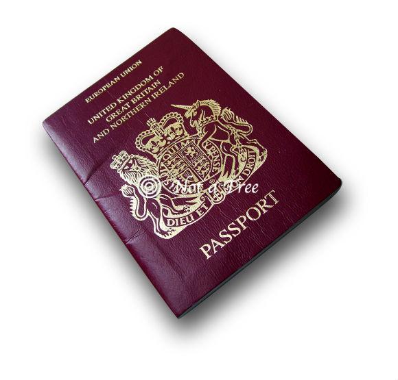 Как я получала британский паспорт
